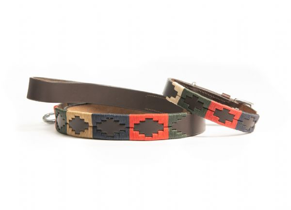 Argentine Hand Embroidered Dog Collar and Lead Bundle Gold/Green/Navy/Red